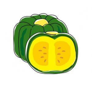 季節の野菜、かぼちゃ(夏)