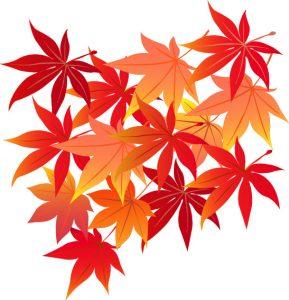 紅葉のイラスト 秋 無料 季節のあいさつ文